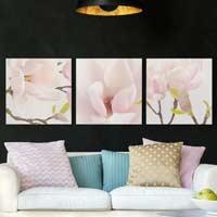 Leinwandbilder kaufen | Bilder auf Leinwand für jeden Raum