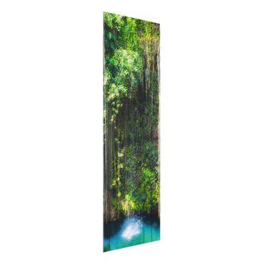 Glasbild - Hängende Wurzeln von Ik-Kil Cenote - Panorama Hoch