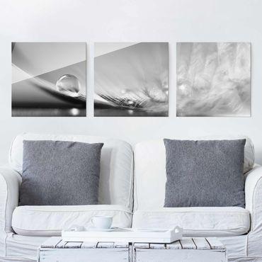 Glasbild - Story of a Waterdrop Black White 3-teilig