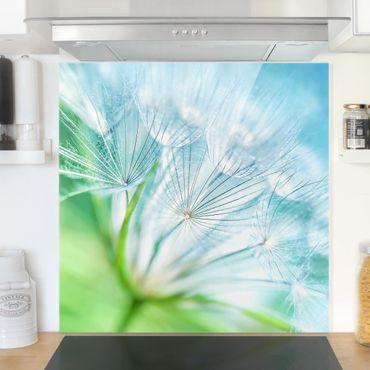 Spritzschutz Glas - Abstrakte Pusteblume - Quadrat 1:1