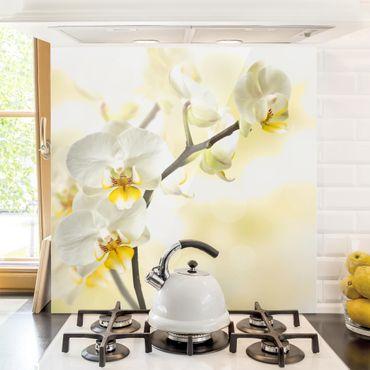 Spritzschutz Glas - Orchideen Zweig - Quadrat 1:1