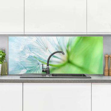 Spritzschutz Glas - Abstrakte Pusteblume - Panorama Quer
