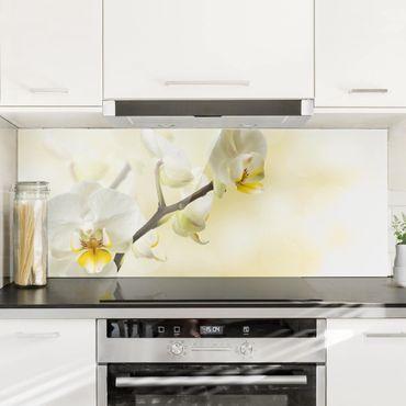 Spritzschutz Glas - Orchideen Zweig - Panorama Quer