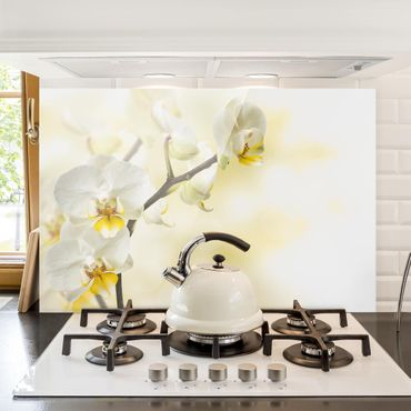 Spritzschutz Glas - Orchideen Zweig - Quer 3:2