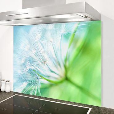 Spritzschutz Glas - Abstrakte Pusteblume - Quer 4:3