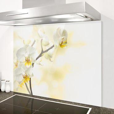 Spritzschutz Glas - Orchideen Zweig - Quer 4:3