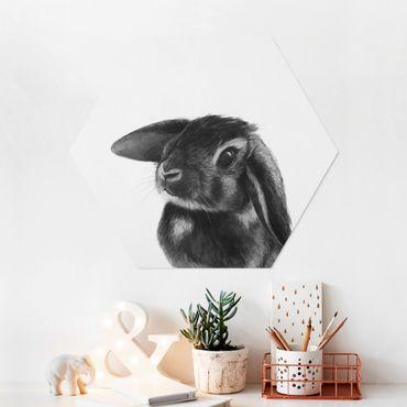 Hexagon Bild Forex - Illustration Hase Schwarz Weiß Zeichnung
