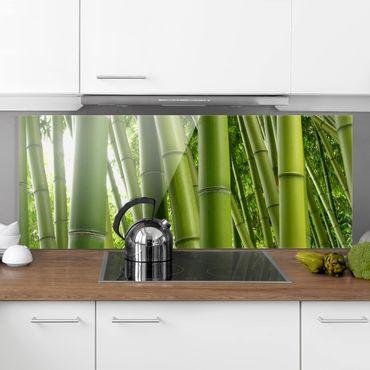 Spritzschutz Glas - Bamboo Trees - Panorama - 5:2