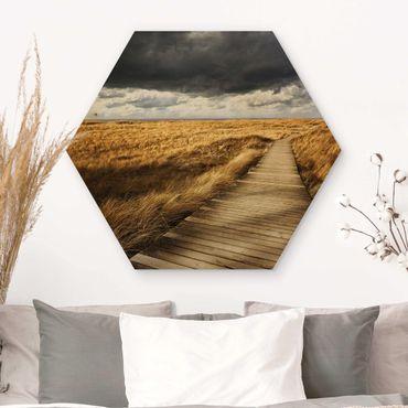 Hexagon Bild Holz - Weg in den Dünen