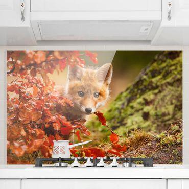 Spritzschutz Glas - Fuchs im Herbst - Querformat - 3:2