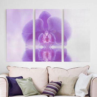 Leinwandbild 3-teilig - Lila Orchidee auf Wasser - Hoch 1:2
