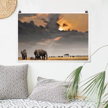 Poster - Elefanten der Savanne - Querformat 2:3