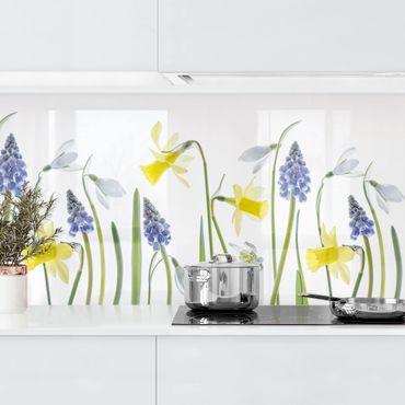 Küchenrückwand - Frühjahrsblüher II