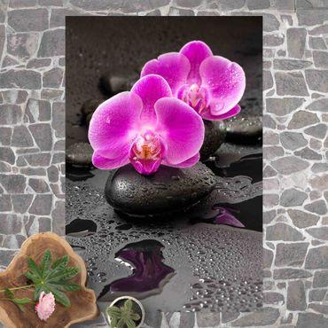 Vinyl-Teppich - Pinke Orchideenblüten auf Steinen mit Tropfen - Hochformat 2:3