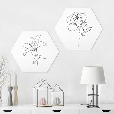Hexagon Bild Forex 2-teilig - Line Art Blüten Schwarz Weiß Set