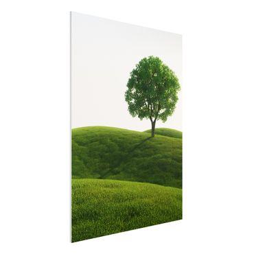 Forexbild - Grüne Ruhe