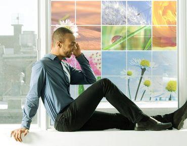 Fensterfolie - Sichtschutz Fenster Spring Impressions - Fensterbilder