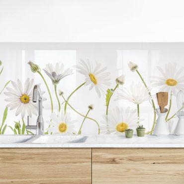 Küchenrückwand - Leichter Gänseblümchen Mix II