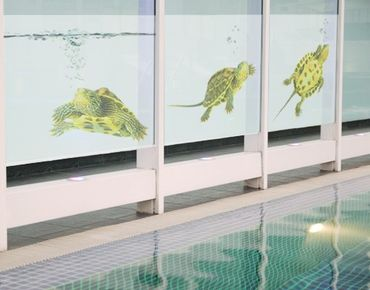Fensterfolie - Sichtschutz Fenster Turtle Trio - Fensterbilder