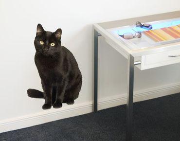 Wandtattoo Katze No.133 Schwarzer Kater