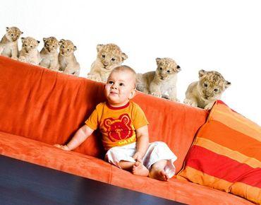 Wandtattoo Löwe No.158 Löwenbaby Set