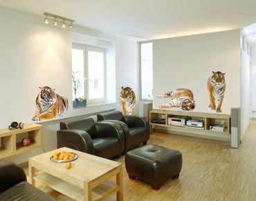 Wandtattoo Tiger No.167 Tiger Set II
