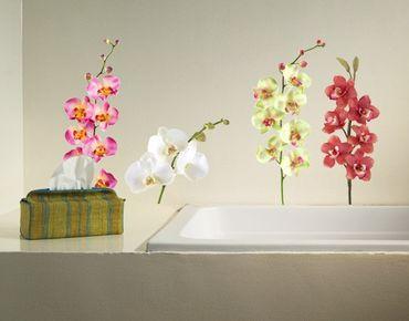 Wandtattoo Orchidee No.183 Orchidee Set II