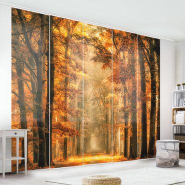 Schiebegardinen Set - Märchenwald im Herbst - Flächenvorhänge