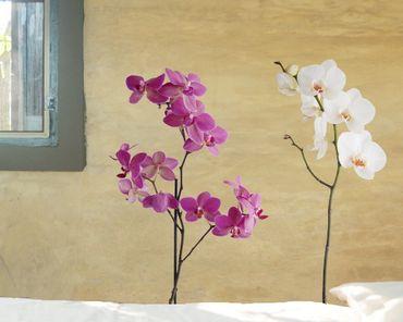 Wandtattoo Orchidee No.SB61 Orchidee Set III