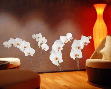 Wandtattoo No.SB60 Orchideen Set IV