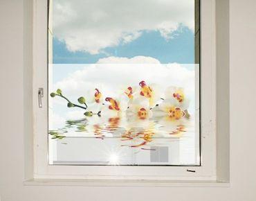 Fensterfolie - Sichtschutz Fenster Vivid Orchid Waters - Fensterbilder