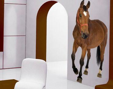 Wandtattoo Pferd No.304 Warmblut