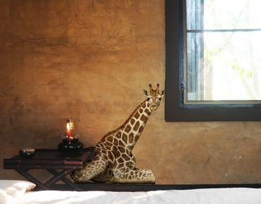 Wandtattoo Giraffe No.313 Liegende Giraffe