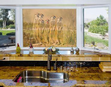 Fensterfolie - Sichtschutz Fenster Meerkat Family - Fensterbilder