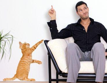 Wandtattoo Katze No.335 Kätzchen mit Tätzchen