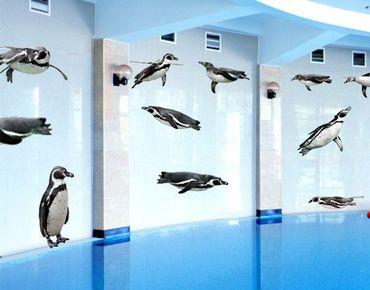 Wandtattoo Vögel No.391 Humboldt-Penguin Set