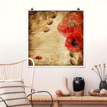 Poster - Poppy Flower - Quadrat 1:1