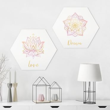 Hexagon Bild Forex 2-teilig - Mandala Dream Love Set Gold Rosa