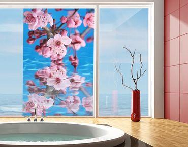 Fensterfolie - Sichtschutz Fenster Kirschblüte - Fensterbilder