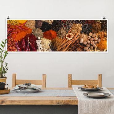 Poster - Exotische Gewürze - Panorama Querformat