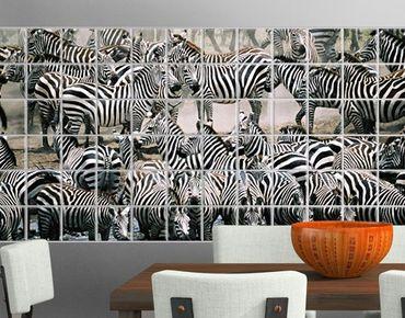 Fliesenbild - Zebraherde