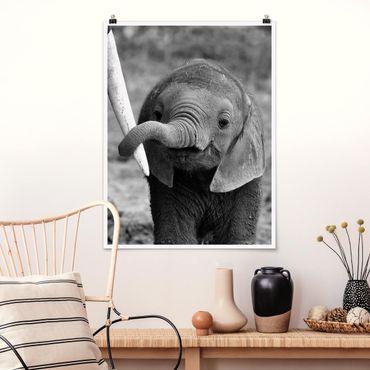 Poster - Elefantenbaby - Hochformat 3:4
