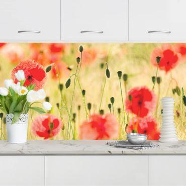 Küchenrückwand - Summer Poppies