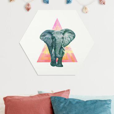 Hexagon Bild Forex - Illustration Elefant vor Dreieck Malerei