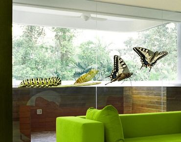 Fensterfolie - Fenstersticker No.422 Metamorphose - Fensterbilder