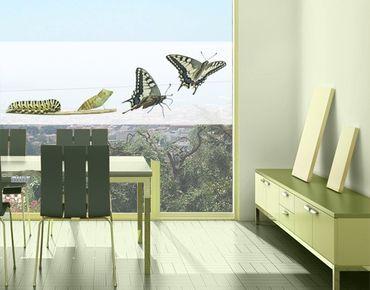 Fensterfolie - Sichtschutz Fenster Metamorphose - Fensterbilder