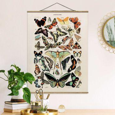 Stoffbild mit Posterleisten - Vintage Lehrtafel Schmetterlinge und Falter - Hochformat 3:4