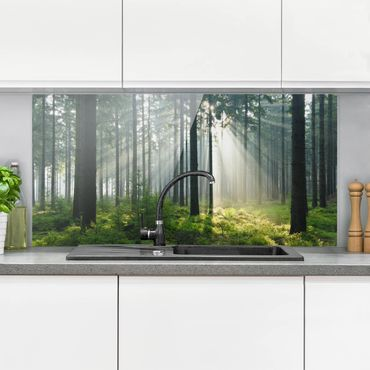 Spritzschutz Glas - Enlightened Forest - Querformat - 2:1
