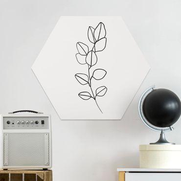 Hexagon Bild Forex - Line Art Zweig Blätter Schwarz Weiß