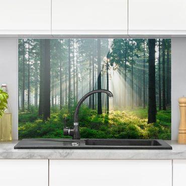 Spritzschutz Glas - Enlightened Forest - Querformat - 3:2